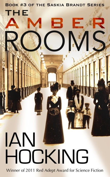 The amber rooms cover